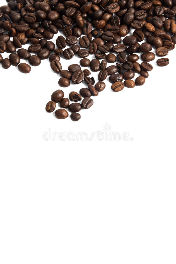 Download Coffee Bean stock photo. Image of excitement, coffee - 43491198