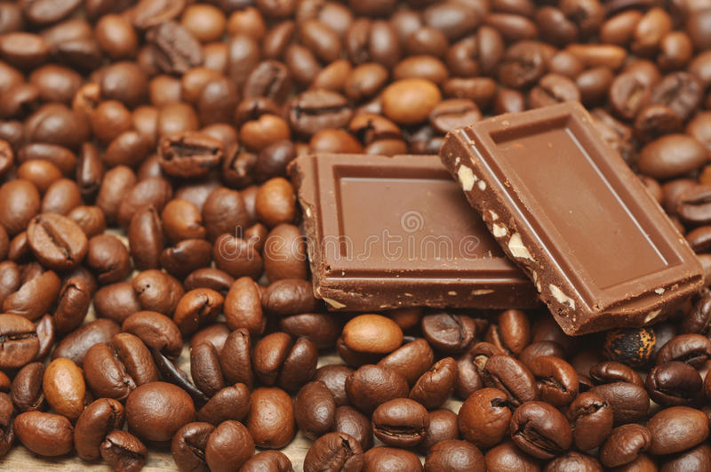 Coffee Bean And Chocolate Stock Photography