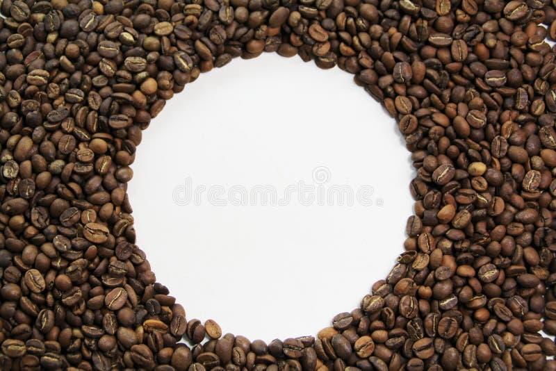 Coffee Bean Circle Stock Image