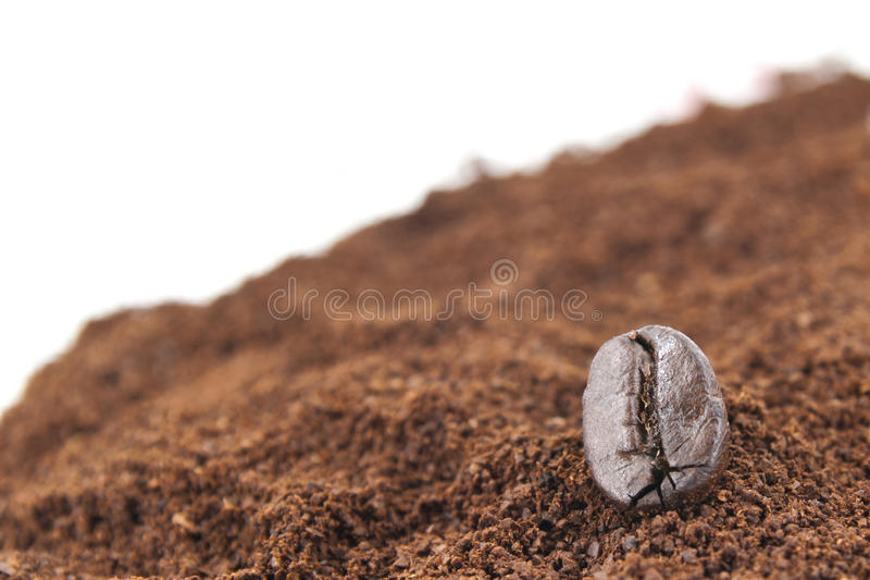 Coffee bean close up. A close up one coffee bean on ground coffee stock photography