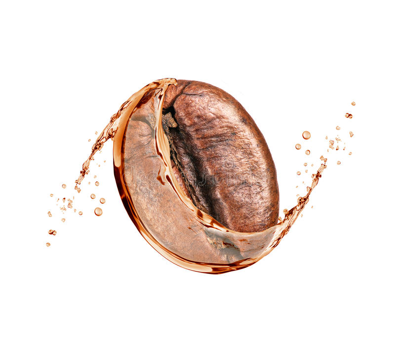 Coffee bean with a coffee splash isolated on white background royalty free stock photo
