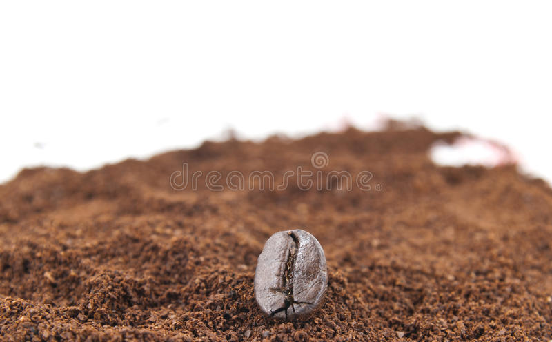 Coffee bean with ground coffee. A close up coffee bean with ground coffee as background royalty free stock images