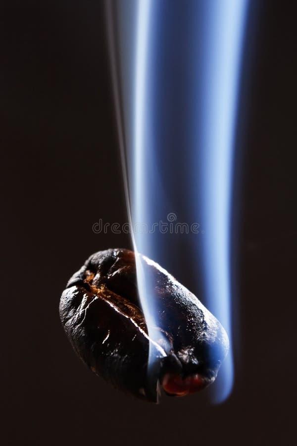 Coffee bean with smoke stock photography