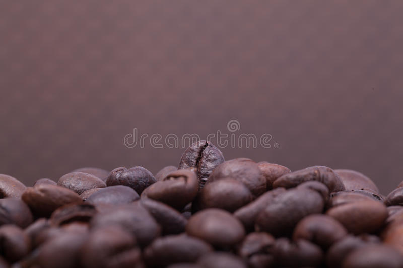 Download Coffee Bean With White Background Stock Image - Image: 37939509