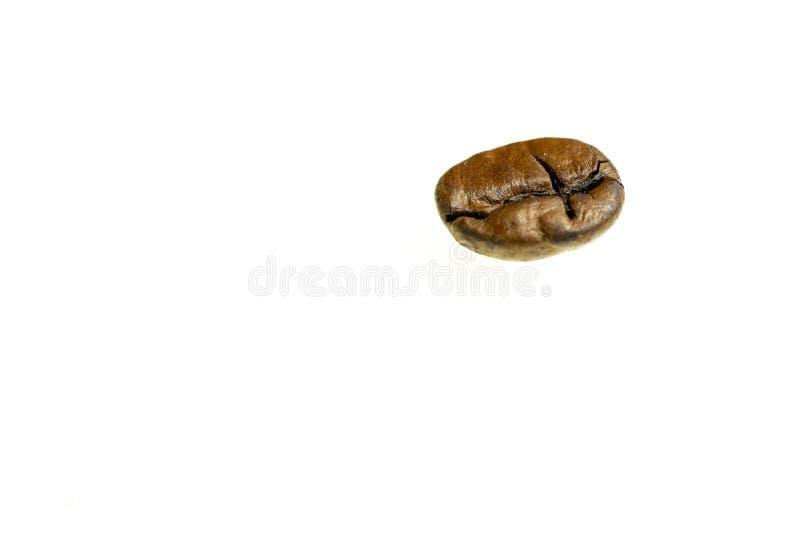 Coffee bean on white background isolated stock photos