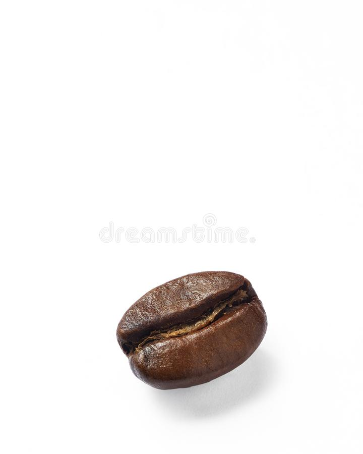 Coffee bean on white paper stock image