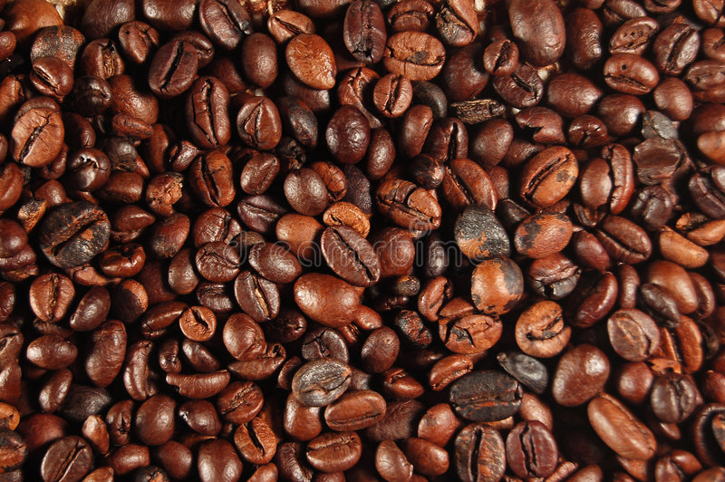 Coffee beans 01 stock image