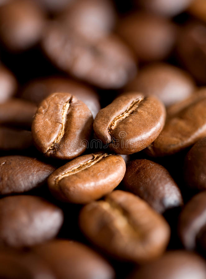 Download Coffee beans stock photo. Image of dark, brown, cappuccino - 12794072