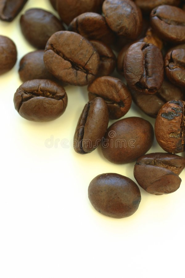 Free Coffee Beans Stock Images - 1504154