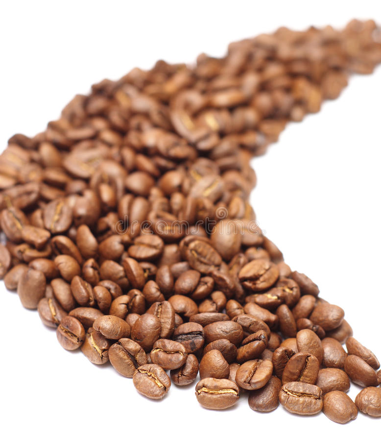 Coffee beans. Grain coffee arabiko taken pictures on white background stock image