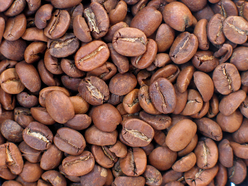 Download Coffee beans stock image. Image of beans, black, grain - 187061