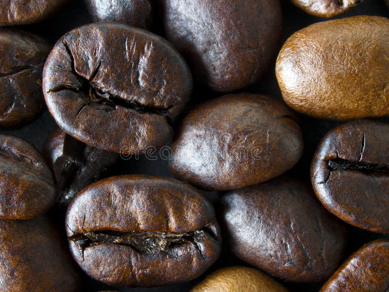 Coffee beans. Stacked together in a pile with some beans revealing their outer shells and some their insides stock photography