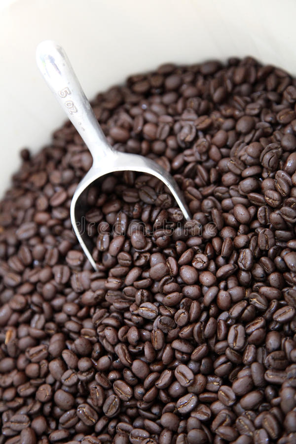 Download Coffee  beans stock image. Image of caffeine, background - 19488763