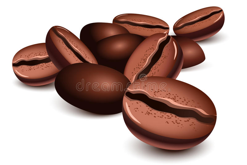 Download Coffee beans stock vector. Illustration of food, cafe - 19641945