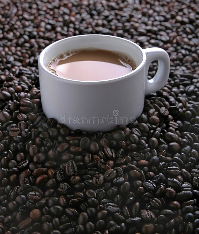 Coffee and beans. Coffee in white cup on coffee beans royalty free stock photos