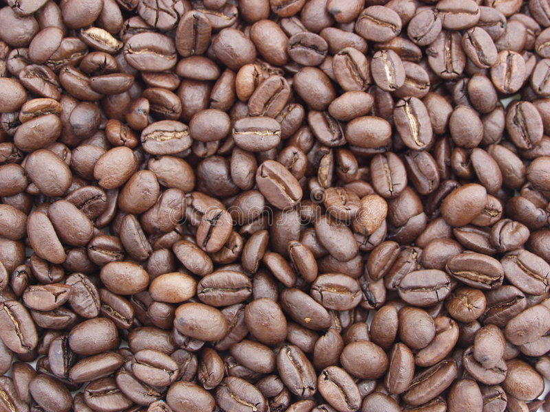 Download Coffee Beans stock photo. Image of dark, brown, energy - 225814