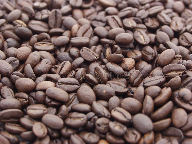 Download Coffee beans stock image. Image of java, seeds, brown, ingredient - 225839