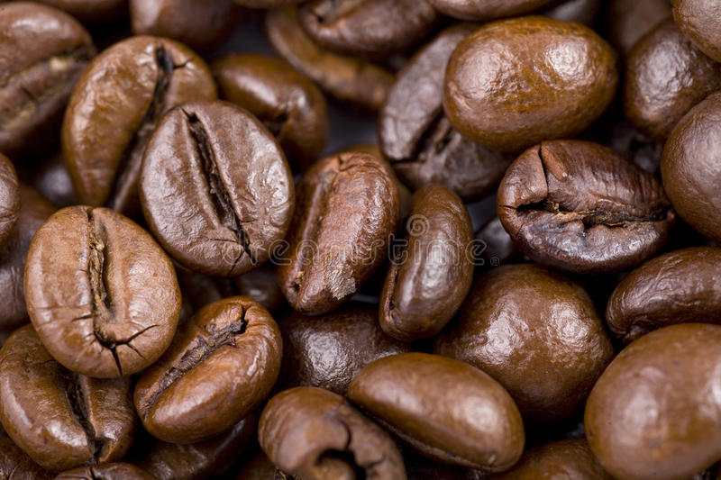 Download Coffee beans stock image. Image of close, cappuccino - 22593829