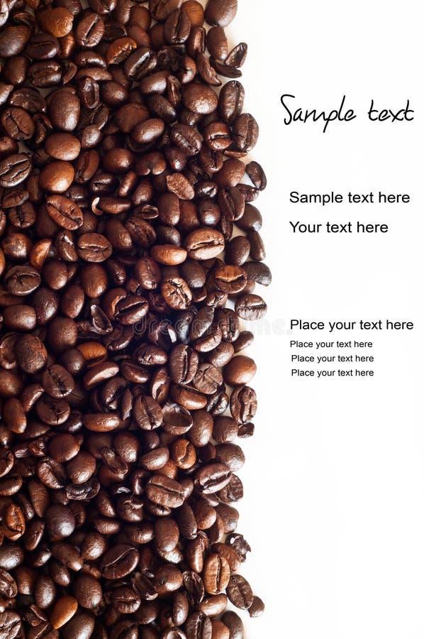 Free Coffee Beans Stock Photo - 23636410