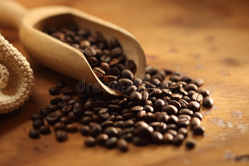 Coffee beans. Black fresh roasted coffee beans stock image