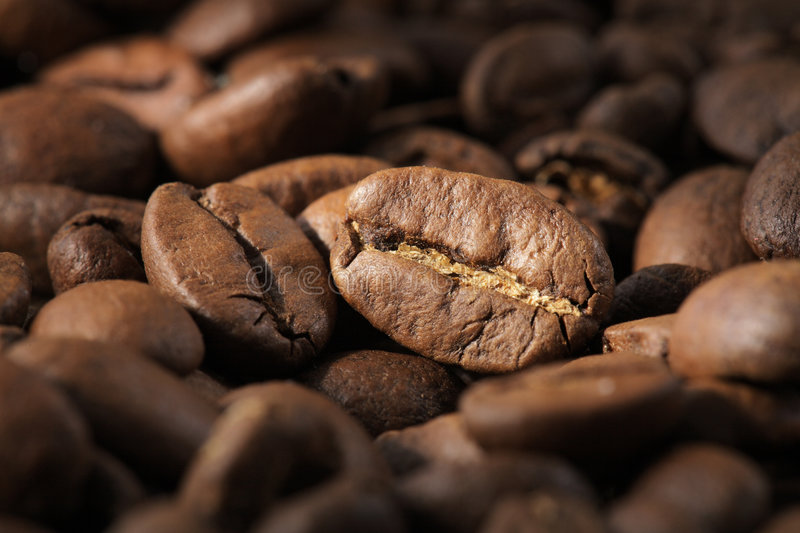 Download Coffee beans stock photo. Image of brown, aroma, closeup - 2684626