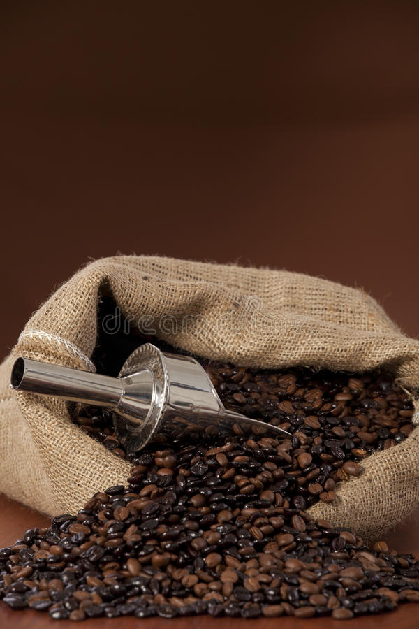 Free Coffee Beans Royalty Free Stock Photo - 28322995