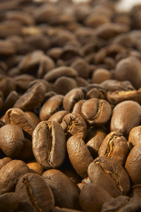 Download Coffee Beans Stock Photo - Image: 519140