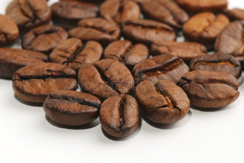 Coffee beans. A group of coffee beans shot on white background, with shallow DOF. Focus is on the first row of beans stock photography