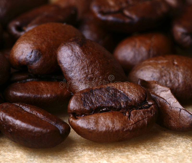 Download Coffee beans stock image. Image of characteristic, groove - 5772729