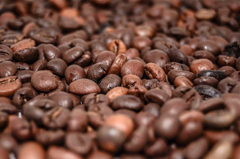 Coffee Beans Free Public Domain Cc0 Image