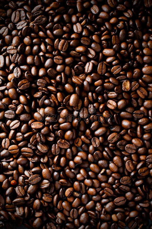 Coffee Beans. Aerial close-up of Arabica, Barista dark roasted coffee beans royalty free stock images