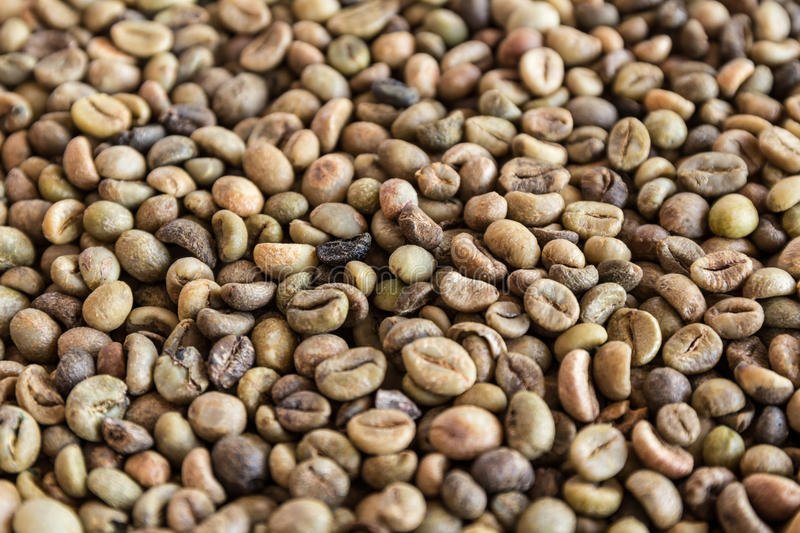 Coffee beans. Background at an angle with selective focus stock photos