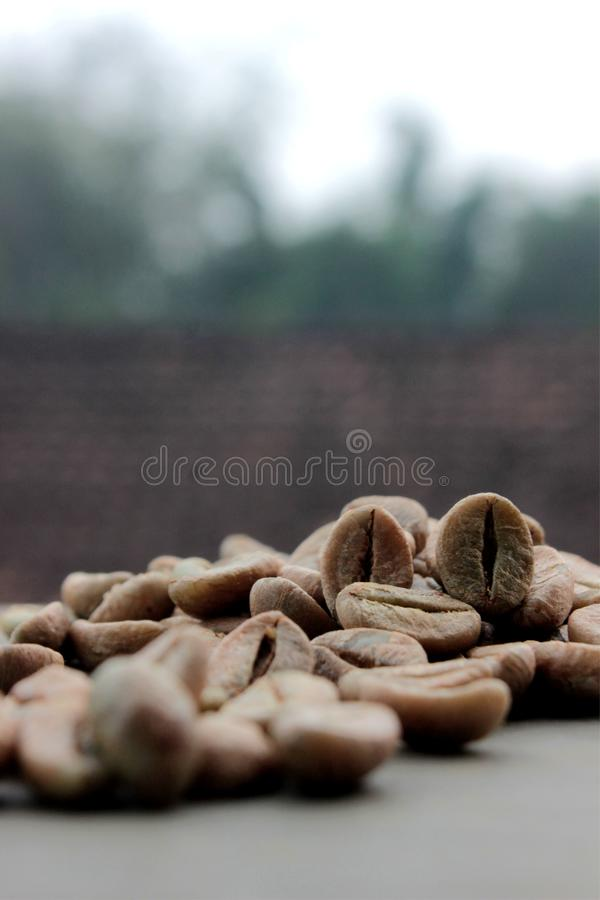 Coffee beans background with focus on coffee royalty free stock image