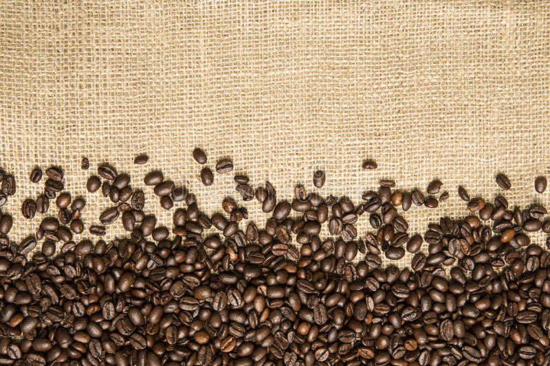 Coffee beans on the background of jute fabrics royalty free stock photography