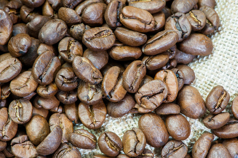 Coffee Beans. Background with many coffee beans stock images