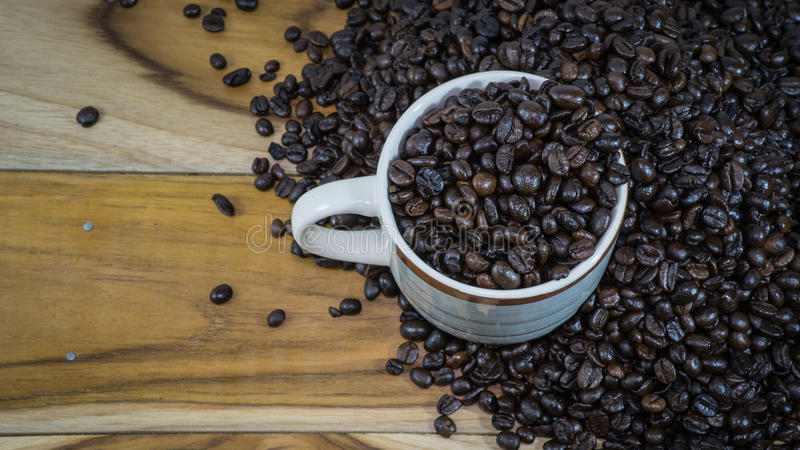 Coffee beans. Background textures of coffee beans royalty free stock photography