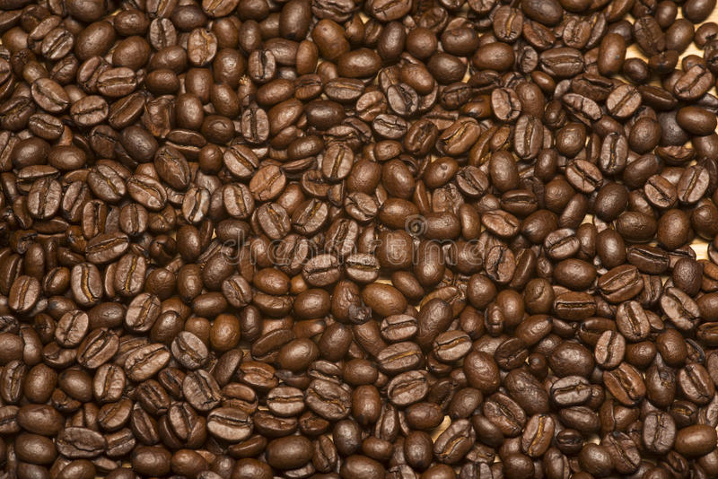 Coffee Beans 2 stock photography