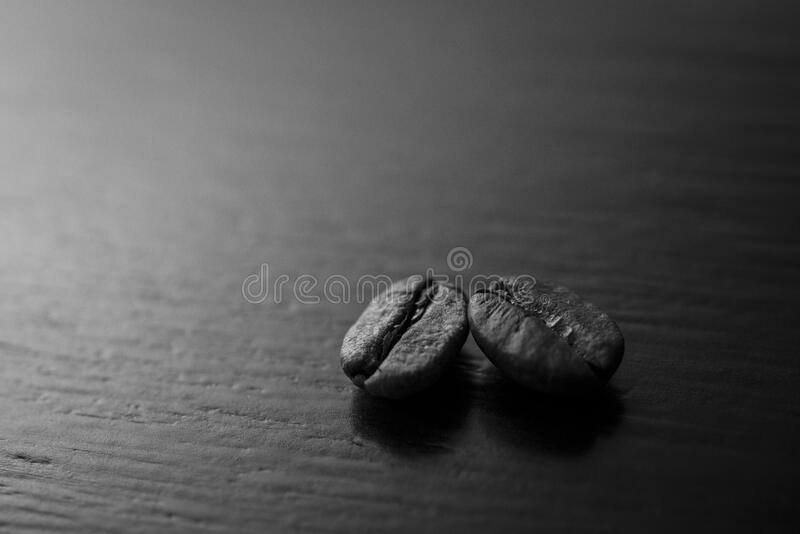 Coffee beans in black and white royalty free stock photography