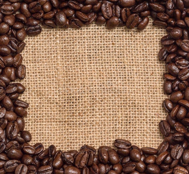 Coffee beans border royalty free stock photo