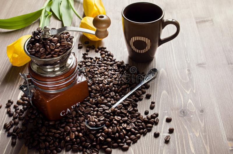 Coffee beans on brown wooden background with yellow Tulip flowers. Coffee grinder and Cup with spoon royalty free stock photo