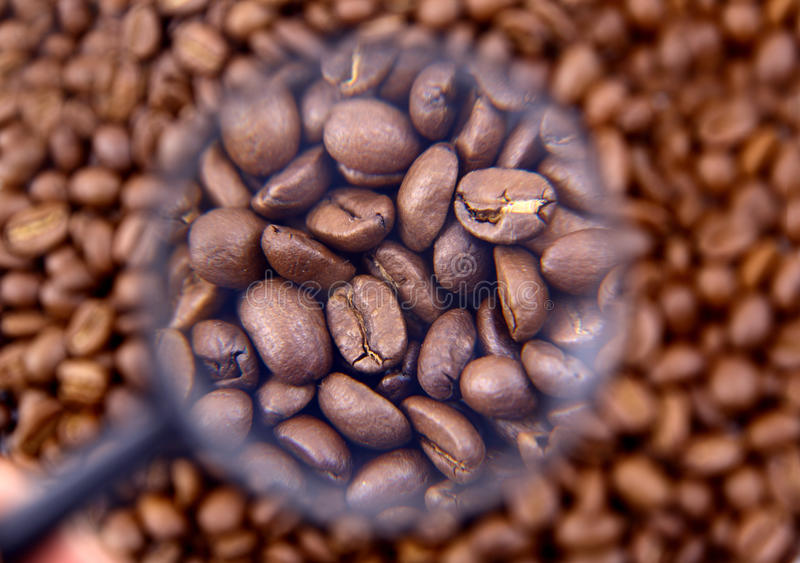Download Coffee beans cafe stock image. Image of food, close, cappuccino - 17250917