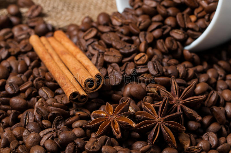 Coffee beans, cinnamon and aniseed in coffee cup. Macro. royalty free stock images