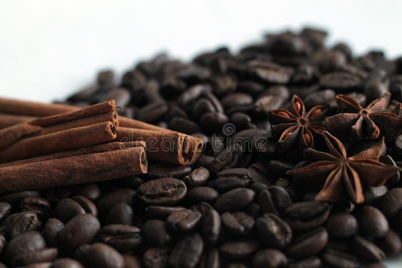Coffee beans and cinnamon sticks isolated on white background. royalty free stock photos