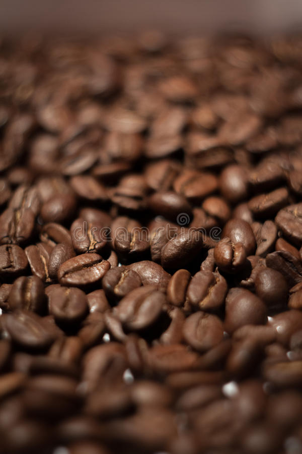 Coffee beans. Close look at coffee beans stock photo