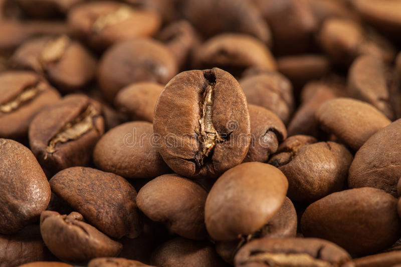 Coffee beans. Close-up of a coffee beans royalty free stock photo