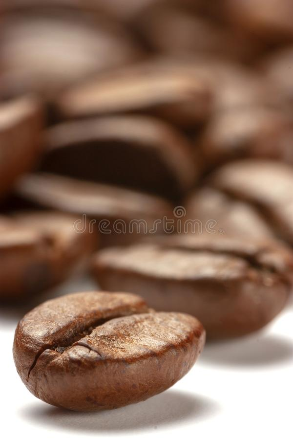 Coffee beans in close up view. royalty free stock photography