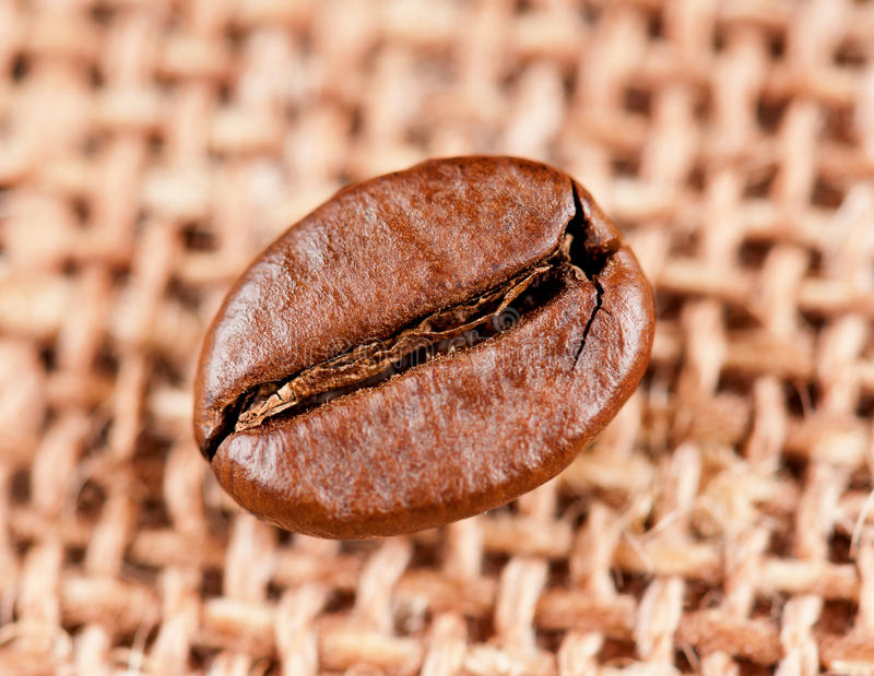 Coffee beans. Closeup of coffee bean on the burlap stock images