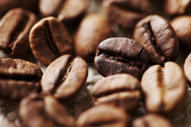 Coffee beans. Closeup of coffee roasted beans stock photo