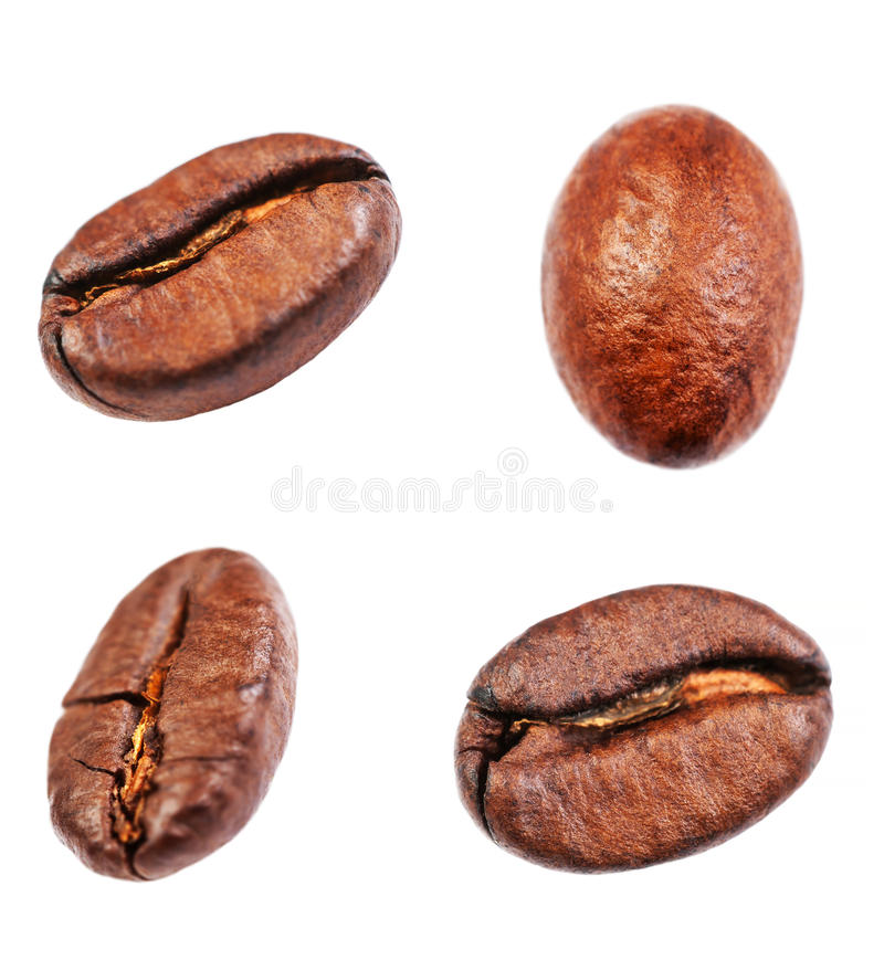 Coffee beans collection Isolated on white background, closeup, stock image