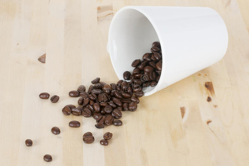 Coffee beans and cup royalty free stock image